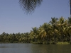 Munroe Island backwaters, near Kollam.