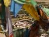 Samye Monastery.