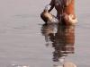 Bathing in the Ganga, Kumbh Mela, Haridwar
