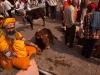 Hari Ki Pauri, Kumbh Mela, Haridwar