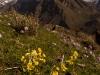 Langtang Valley, towards Langtang Lirung