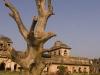 Jahaz Mahal, Royal Enclave, Mandu.