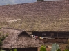 Traditional long houses, Shianghachingnyu, Nagaland