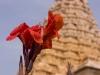 Brihadishwara Temple, Gangakondacholapuram.