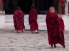Young monks, Tawang Gompa