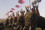 Ceremonial elephants, temple festival in Wadakkancheri, Thrissur District.