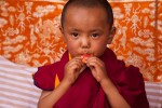New Rimpoche eating an apricot at his chairing ceremony, Spituk Monastery