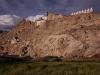 Shey Gompa, Ladakh