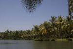 Munroe Island backwaters, near Kollam.