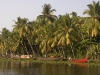 Backwaters near Alleppey.