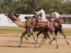 Camel race, Bundi.