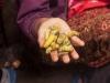 Selling larva, Market, Kohima