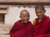 Young monks, Hemis Festival.