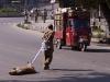 Man pulls a dead dog across the street in Srinagar, Kashmir