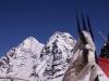 5,266 m (17,275 ft) Charang La