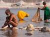 Sadhu and women washing clothes, Kumbh Mela, Haridwar