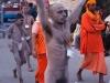 Naga Sadhus gather for their procession to Hari-Ki Pairi Ghat to take their bath in the Ganga on Somvati Amavasya - Dvitya Shahi Snan, Khumbh Mela, Haridwar