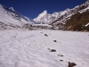 Approach to Nanda Devi East Base Camp