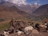 View back towards Panikhar