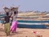 Bringing in the catch at the beach in Puri
