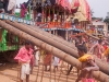 Putting up the ramps used to carry the deities onto the carts, Rath Yatra, Puri