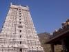 Arunachaleswar Temple, from Mt Arunachala, Tiruvannamalai