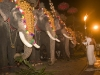 Elephant procession for a temple festival in Thrissur.