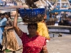 Bird snatches a fish from a basket, as a woman carries the fish from the boat to the transport truck, Malpe Harbor.
